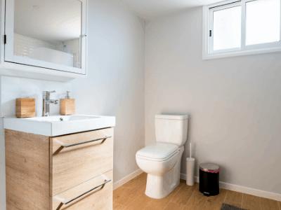 homemade toilet liquid